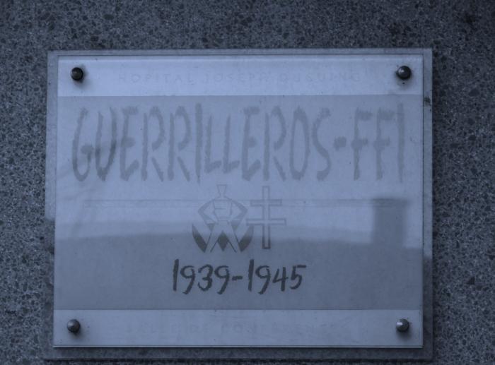 guerrilleros-ffi